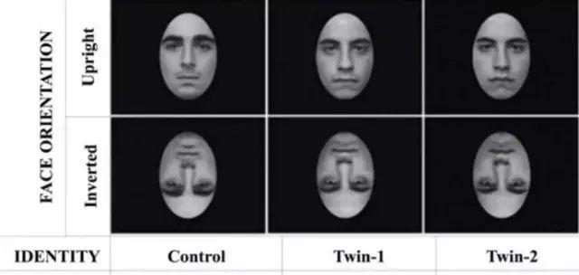 这也算科学研究?这样一本正经地搞笑好 脑洞的表情包洗脑柴犬图片图片