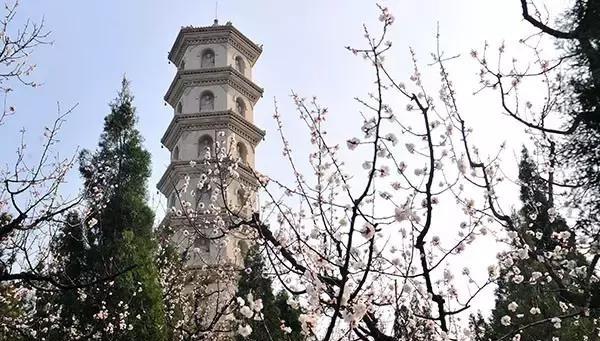 清明节山东最全自驾游旅游长假,这个小攻略,就吕伐登旅游攻略图片