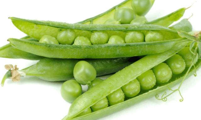 冬春荷兰豆的栽培技术。干煸肥肠决窍图片