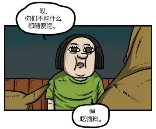 搞笑漫画:兼职管理漫画青空的爱凤,居然KO了獐农场德井画动物图片