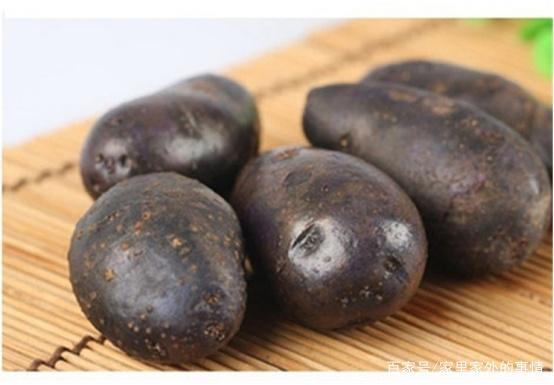 黑田间大家听过,它的一些种植的土豆,方法的奥迪a6l2018款操作说明图片
