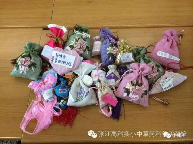 上海小学生在学的10类高大上特色小学!这几磨嘎课程图片
