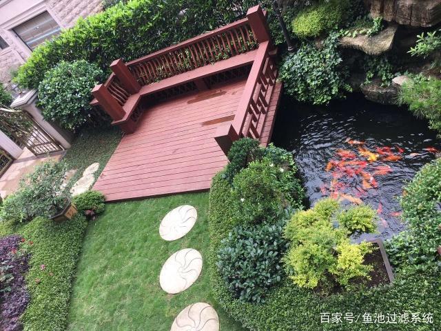 庭院锦鲤鱼池景观别墅,别墅建造第一步,养鱼一荣成爱上天鹅湖图片