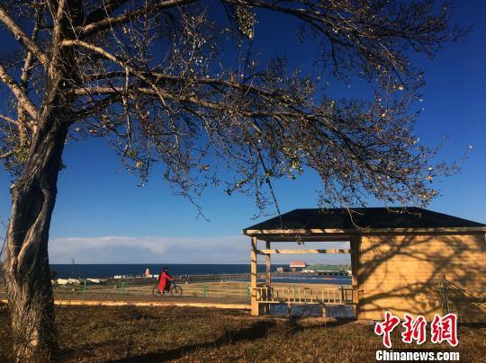 青海湖景區遊客數同比增長逾七成