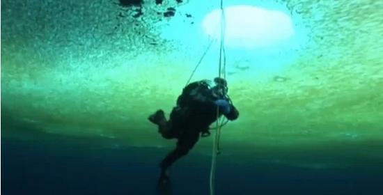 澳门永利赌场网站:南极独特脆弱的生态近况如何?
