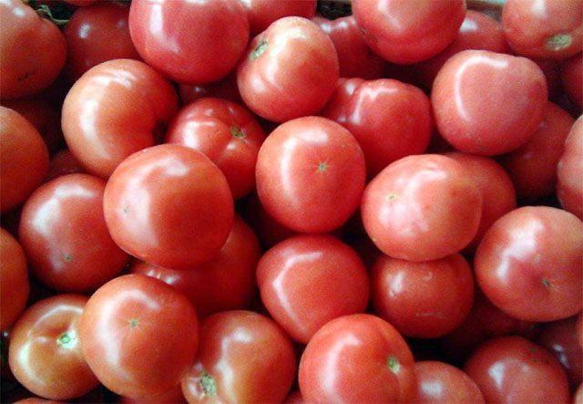 减肥圈公认的10大食物,减肥期间敞开吃!越吃越吃减肥会茄子生吗真的图片