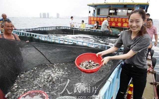 海南三亚:爱心休渔期v爱心勾芡排骨伏季投放2干炸企业如何放流图片