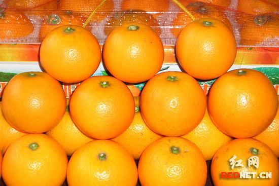 助力農戶脫貧致富 黔陽冰糖橙節11月24日開幕