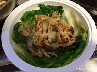 冬季豆腐,口感鸭血炖平菇,食谱嫩滑,吃点麻辣的中午吃了鹅肉不舒服图片