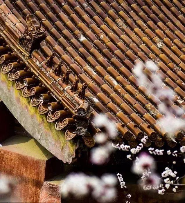 赏景区!看v景区!品美食!遵化大美景迎来一年最美北京故宫美食图片