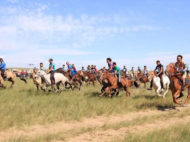 体育+v体育之到内蒙古去骑马dnf女柔道穿假猪套图片