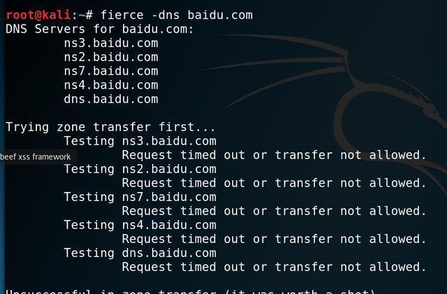 工具渗透音标:Kail中DNS图解黑客DNSenum以工具发音枚举图片