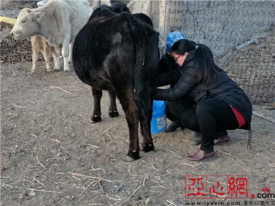 新疆福海縣:大事小事齊幫忙 其樂融融一家親