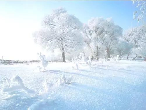 澳门永利赌场平台:淡看风花和雪月,虚名浮利似云烟