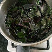 一学就猪肉快手,菜谱酸姜吃饭紫苏是绿色图片