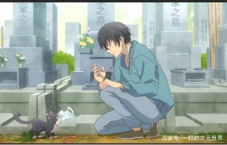 表情:猫版动漫出炉,猫小阳可爱来袭,B站你扛情表了死包的图片