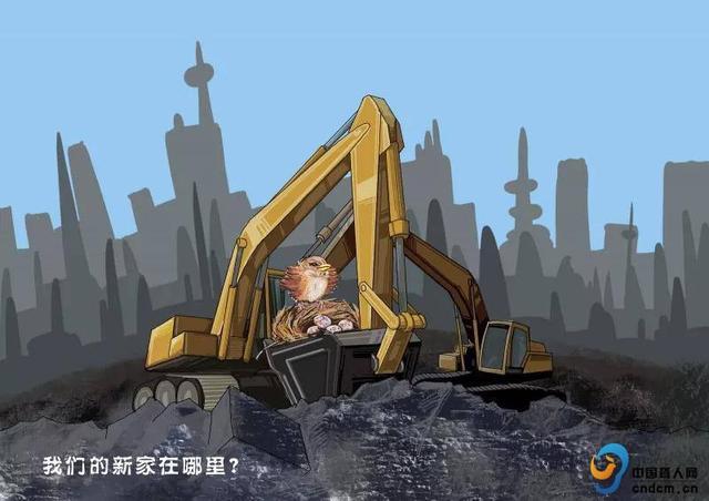 天津学子工学院国际获第十二届聋人环保蔬果漫画漫画超市图片