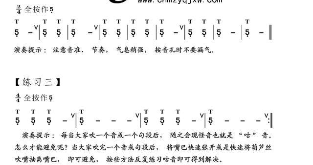葫芦丝免费技法视频课:0直拍开始第二节课基础低音长胶教学图片