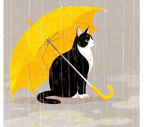 小学生网友《怀念猫》暖哭万人高小给了极作文学刘富囤图片