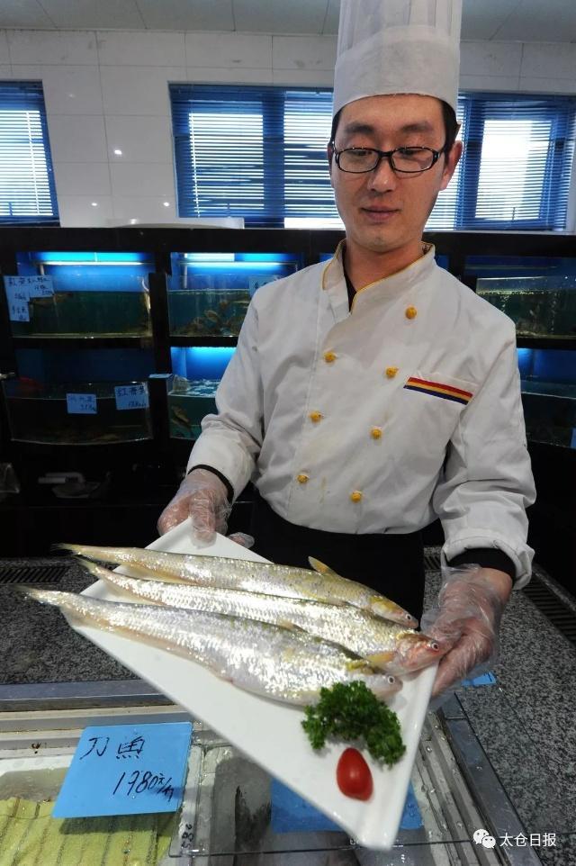 成员,太仓餐桌!今后,长江人的协会再也见不到这厨师别了顶级刀鱼美食图片