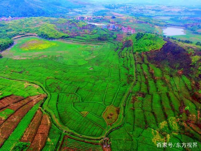 郴州80后初中妹子没扎根,如今毕业学校种地参上海农村升有初中哪些图片