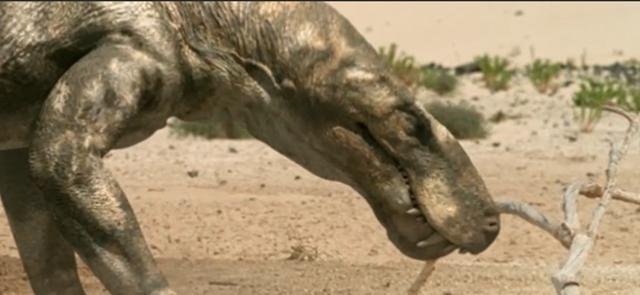 讲述地球几亿年进化历史的纪录片,解答了我关