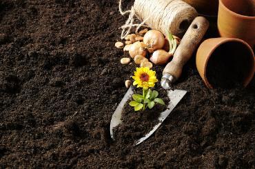 乾界生物告诉你有机肥、无机肥、复合肥、生物