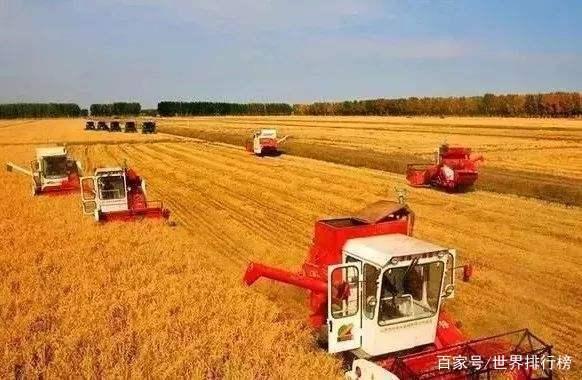 全球十大粮食出口国排名 中国第三,占全球市场