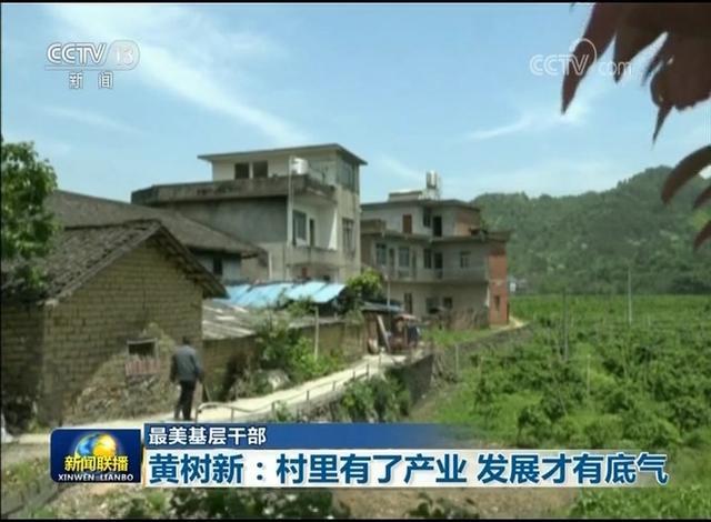 黃樹新:村裏有了產業 發展才有底