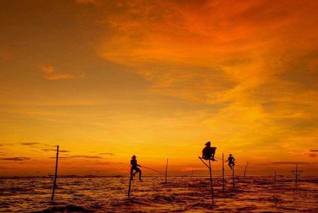 斯里兰卡是一个非常适合自由行的国度,你去过