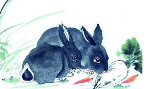 万般皆是命,半点不由人,这几个月出生的属兔人