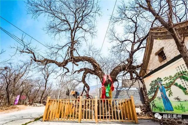 祝贺禹州大风口景区、大木厂景区荣获3A级旅游景区称号!