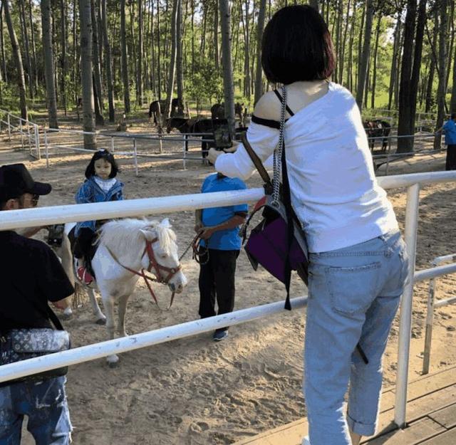 张丹峰洪欣一家三口逛动物园,4岁女儿张晞彤正