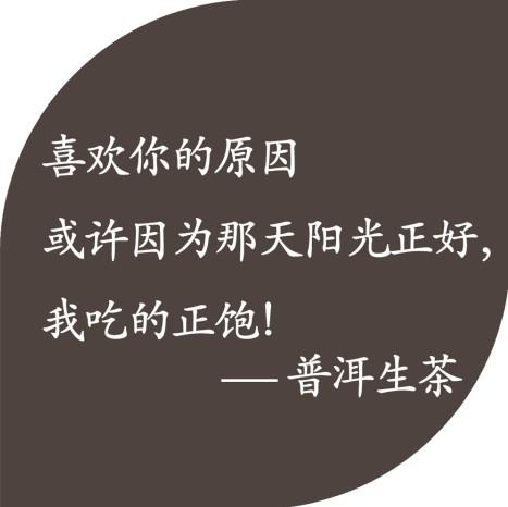 原创茶语录,形容茶叶的唯美句子之一