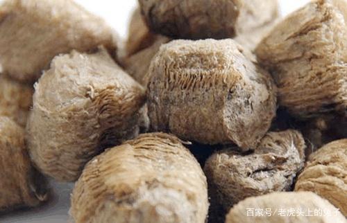 江湖人称猴儿包,是农村小孩的零食又是尿床偏