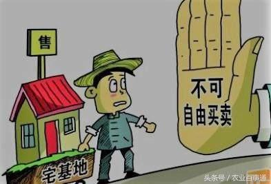 农村宅基地不能自由买卖?谁说的?这33个市县