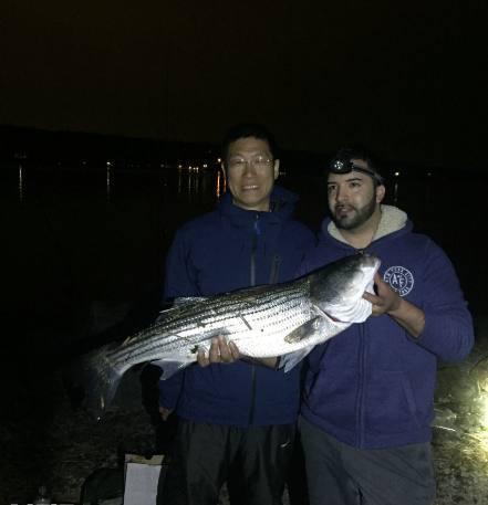 华人在美国海边成桶钓大鱼,老外看了羡慕嫉妒